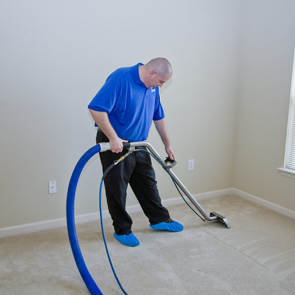 professional carpet cleaning services expert